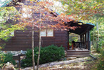 yellow owl cabin