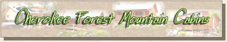 cherokee forest mountain cabins